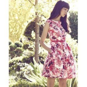 Eliza J Belted Floral Print Faille Fit&Flare Dress